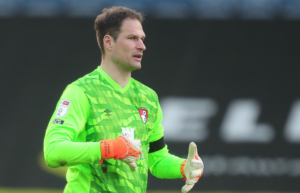 Everton are reportedly signing Asmir Begovic